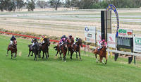 Stable Runners For Benalla On Friday