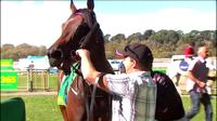 Skye And Me Wins The Maiden At Kyneton Under Jake Duffy