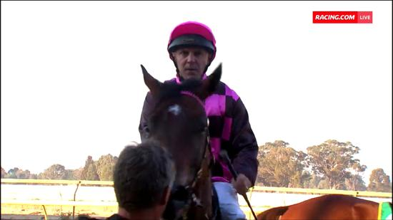 Wyangle Takes Out Race 8 At Benalla Under A Masterful Ride By Nick Souquet