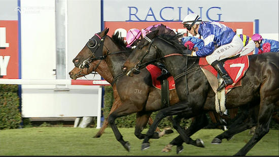 Wyangle & Nick Souquet Use Up Every Bit Of The Albury 1175m To Score A Narrow Win