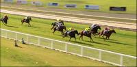 Collis Runs Third At Wodonga Under Nick Souquet