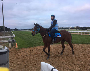 OUTSTANDING OPPORTUNITY TO LEASE A FILLY BY CHOISIR THAT'S READY FOR RACING