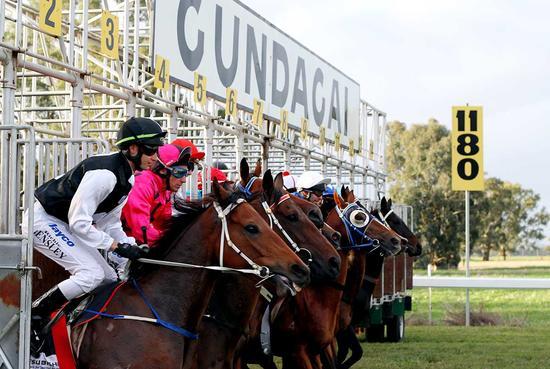 King Zoff A Likely Starter At Gundagai Adelong Club Meeting On Sunday