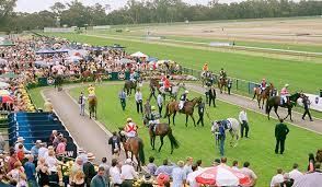 Two Stable Runners Compete At Bendigo On Wednesday