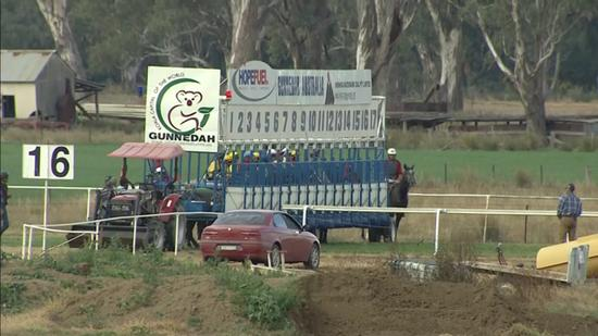 Two Stable Runners Saddle Up For Gundagai On Friday