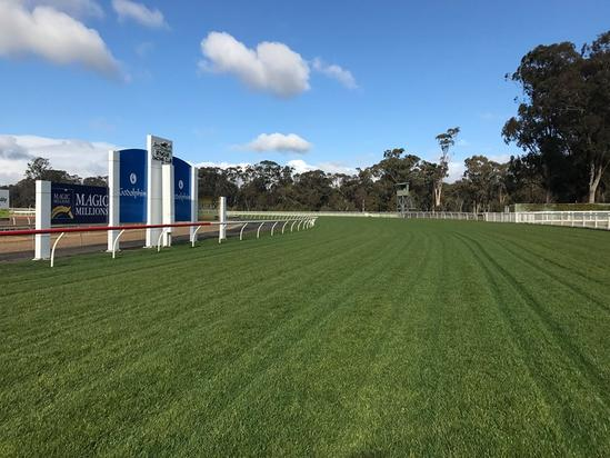 Two Stable Runners Accept For Seymour On Monday