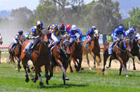 The Team Saddles Up A Treble At Wodonga