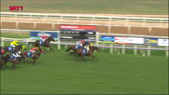 Banger Improves On A Recent Outing To Finish 2nd At Albury