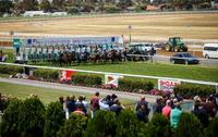 Two Stable Runners To Compete At BET 365 Geelong On Friday