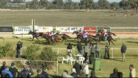 Quacky Jack Puts In A Good Effort In Running 2nd At Corowa Under Brian Murphy