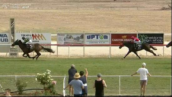 Two Stable Runners Compete At Corowa On Tuesday
