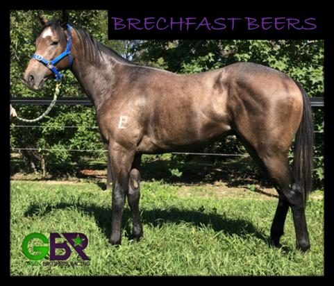 Brechfast Beers
