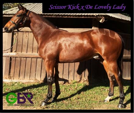 Scissor Kick X De Lovely Lady