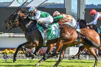 ELLE OF A ROUGH RESULT AS 150/1 SHOT LOBS AT GOSFORD