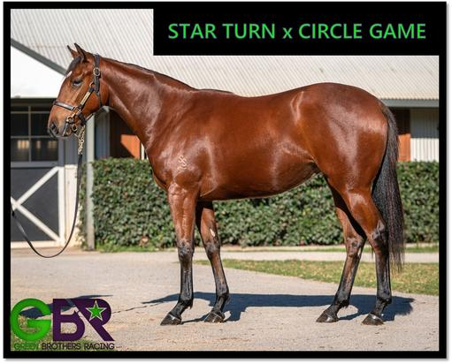 STAR TURN X CIRCLE GAME