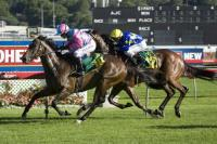 Hairy To Take On Villiers
