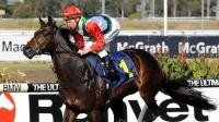 Stable star and first-up specialist Rebel Dane is set to resume on March 27