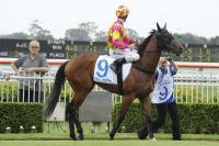 Racy to live up to her name at Canterbury