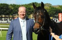 Rebel Dane to stand at Swettenham Stud