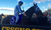 Next Level claims Cessnock Cup