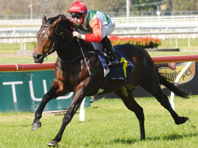 Rebel Dane new Missile Stakes favourite