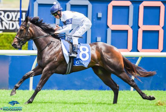 Portelli hints at return of his mighty filly