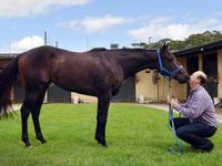 Portelli pair poised to present king of the kids with his crown