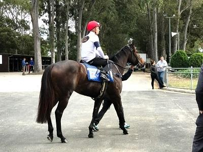 Portelli Stars Shine At Warwick Farm Trials