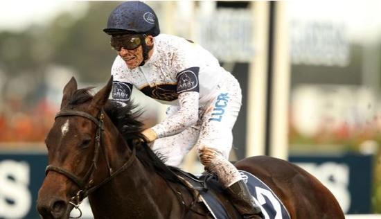 Golden Slipper winner bouncing ahead of Moir Stakes