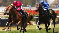 Secret Lady sinks Golden Gift plunge and heads to the Magic Millions