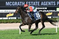 Portelli Gets Lippy About Filly