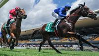Gary Portelli hoping Secret Lady could be the Golden Gift