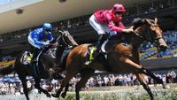 Secret Lady wins barrier trial