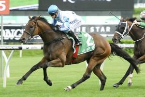 Testashadow spot on for Villiers