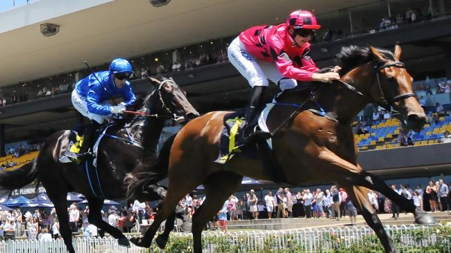 Secret Lady faces last-ditch Slipper bid