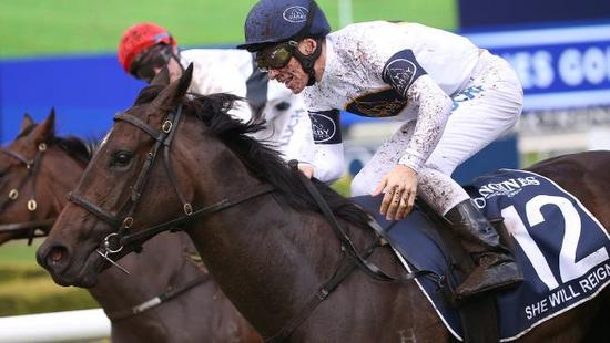 She Will Reign primed for return in Inglis Sprint