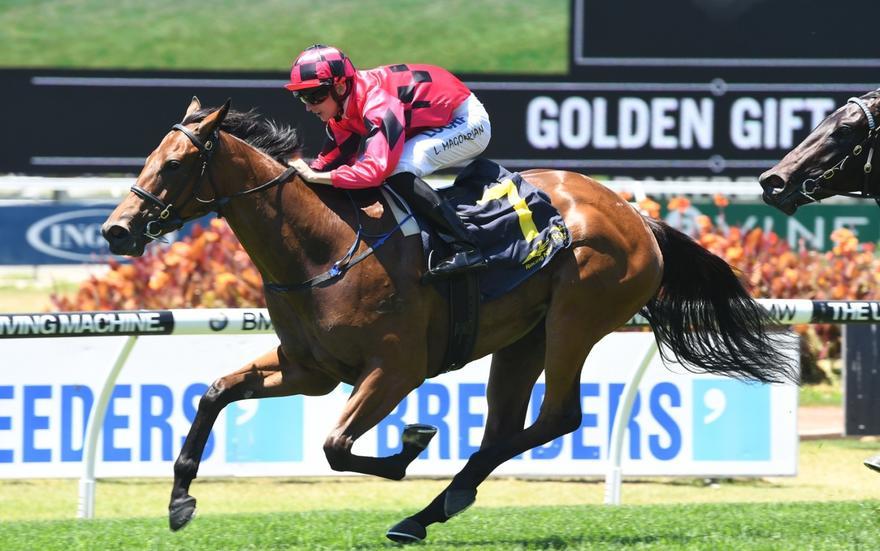 Gary Portelli keeps Golden Slipper ambitions in check