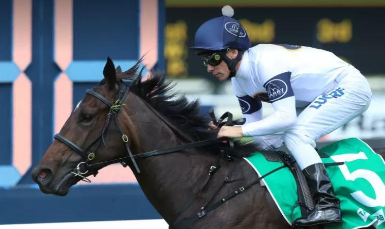 She Will Reign to run in 2018 Arrowfield Sprint