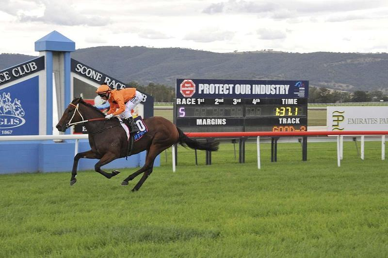 Melody On Song For Queensland