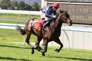 SA Filly To Join Lees Stable - Briefly