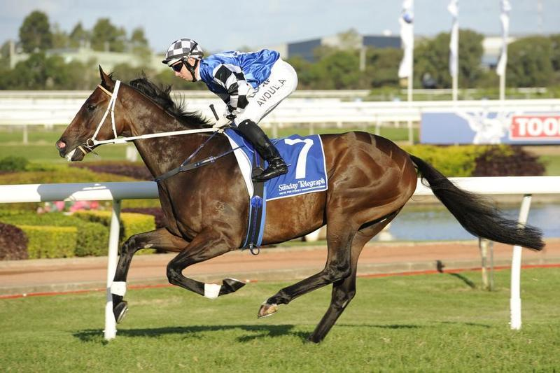 New Acquisition Resumes Without Blinkers