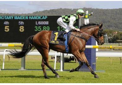 Weather Key To Wyong Cup Plans