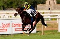 Hometown Feature Likely For Goldstream