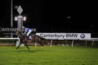 'Tis The Season For Kris' First Canberra Starter