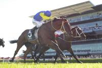 Weight's Right For Le Romain In Doncaster Mile
