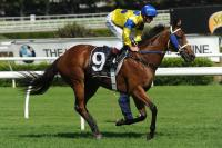 River Lad May Carry Newmarket Hopes