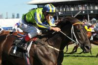 Lucia Pleases In Final QE Gallop