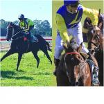 Ace Pair To Trial Again At Gosford
