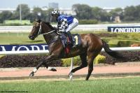 Subtle Gear Changes On Taree Cup Pair