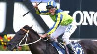 Two Cox Plate Lead-Ups For